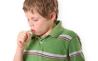 Растительные средства от кашля