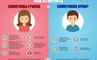 Орз и ОРВИ разница чем лечить