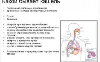 Сколько проходит кашель