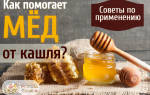 Мед при кашле можно или нет